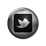 new-twitter-bird-square-small
